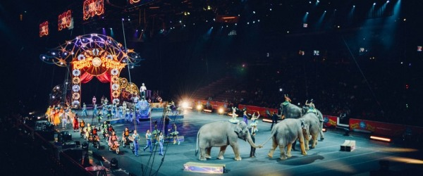 The Cirque d'Hiver in Paris; the winter circus season is open!